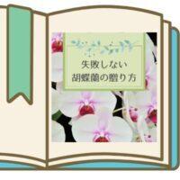 失敗しない 胡蝶蘭の贈り方 (1)